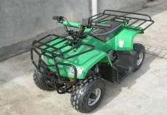 Детский квадроцикл AVmoto FPA50-L